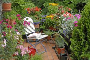 garden on a balcony