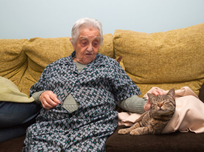benefits-of-pet-care-for-a-loved-one-who-has-dementia